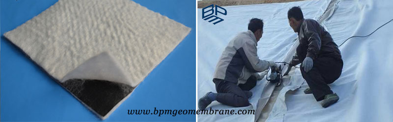 Composite Geomembrane Liner manufacturers