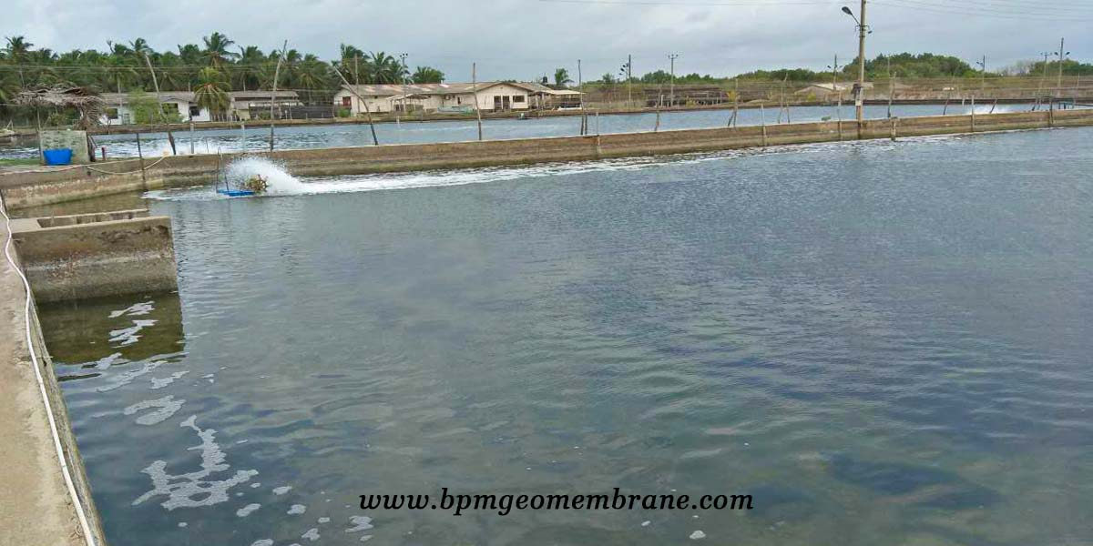 Fish Pond Liner for Aquaculture Project in Sri Lanka