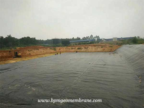 Geomembrane Liner for Fish and Shrimp Pond Project in India