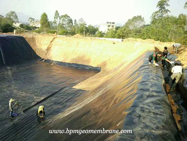 Geomembrane Pond Liner for Fish Pond Project in India