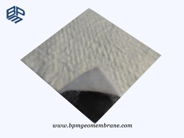 Composite Geomembrane HDPE Liner Home