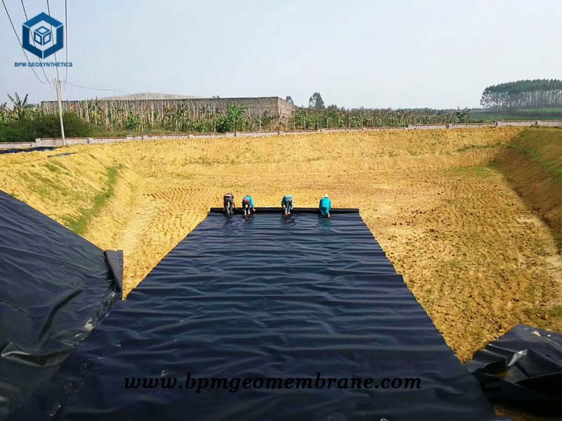 Commercial Pond Liner for Fish Farm Project