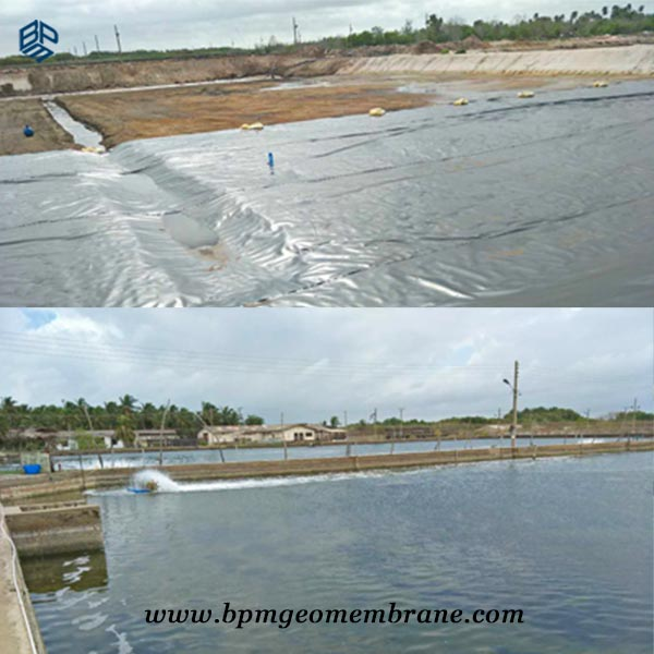 HDPE geomembrane Aquaculture pond liners