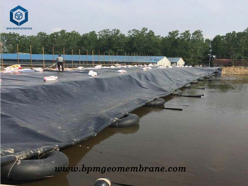 Aquaculture Pond Liner for Agriculture project